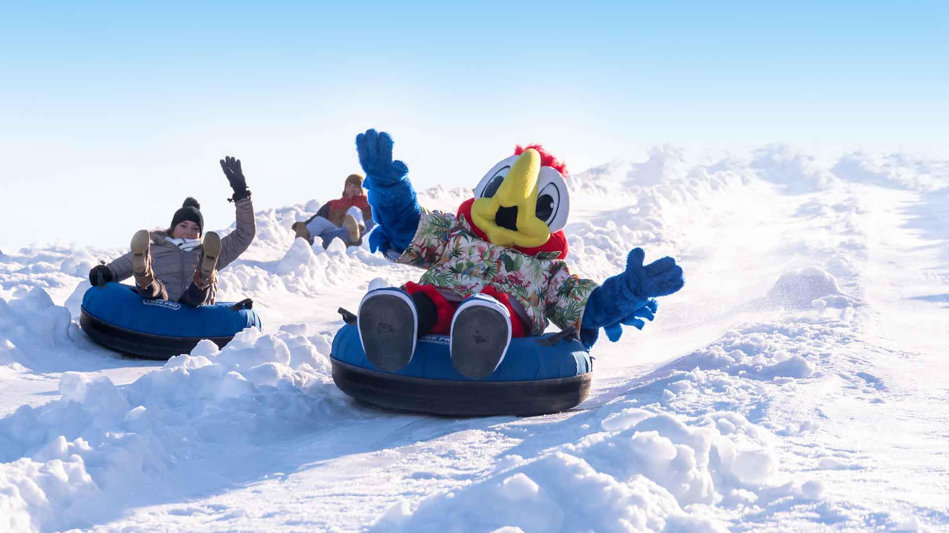 Snow Tubing with Sid the Parrot