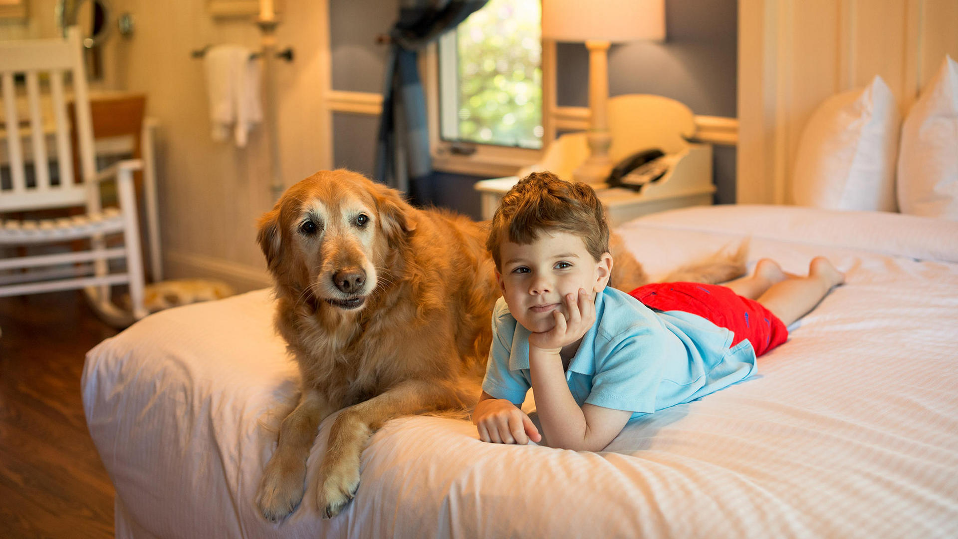 Dog & Child Laying on Bed
